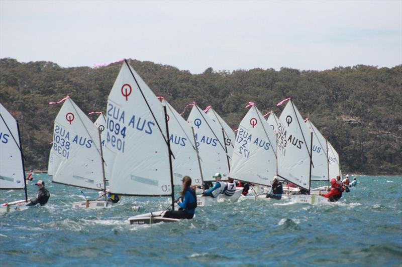 Optimists on day 1 of the NSW Youth Championship at Lake Macquarie - photo © Stephen Collopy