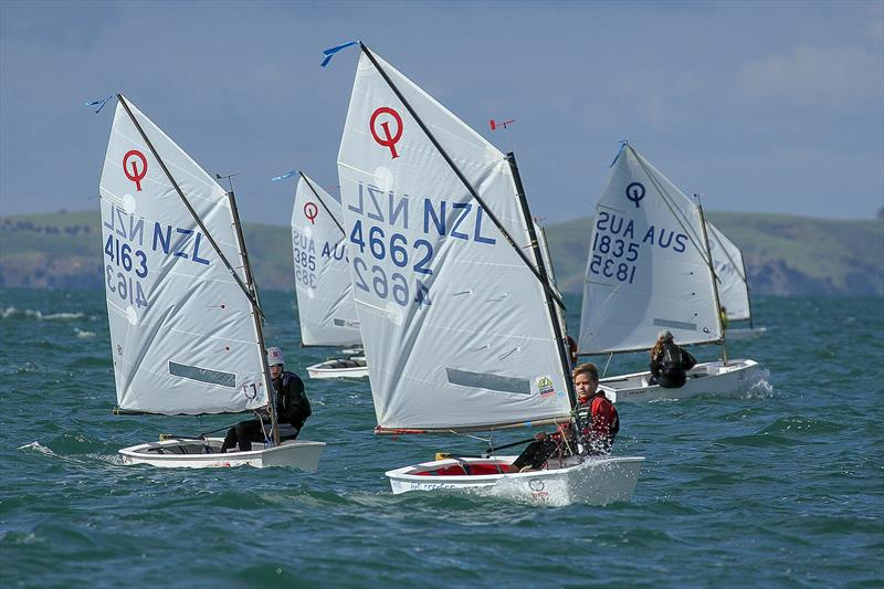 Silver fleet - Day 6 - 2019 Toyota New Zealand Optimist National Championships, Murrays Bay, April 2019 - photo © Richard Gladwell