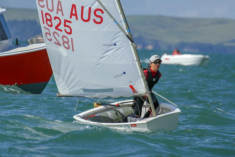 Daniel Links (AUS) - Royal Prince Alfred YC - Day 6 - 2019 Toyota New Zealand Optimist National Championships, Murrays Bay, April 2019 photo copyright Richard Gladwell taken at Murrays Bay Sailing Club and featuring the Optimist class