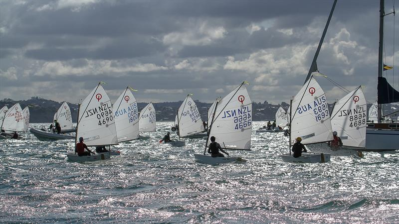 Gold fleet head for a new start- Day 6 - 2019 Toyota New Zealand Optimist National Championships, Murrays Bay, April 2019 - photo © Richard Gladwell