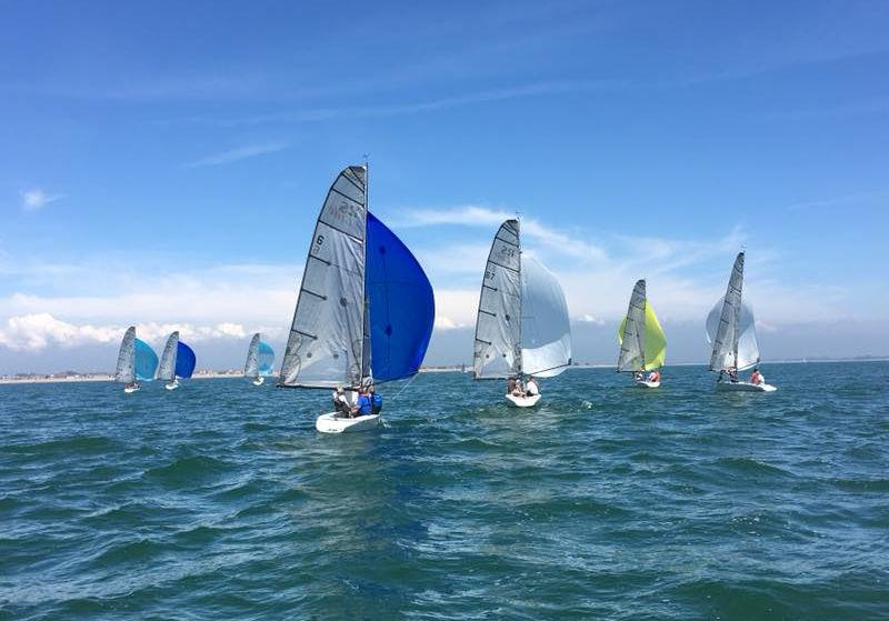 RS Elites at the Hayling Island Sailing Club Whitsun Regatta