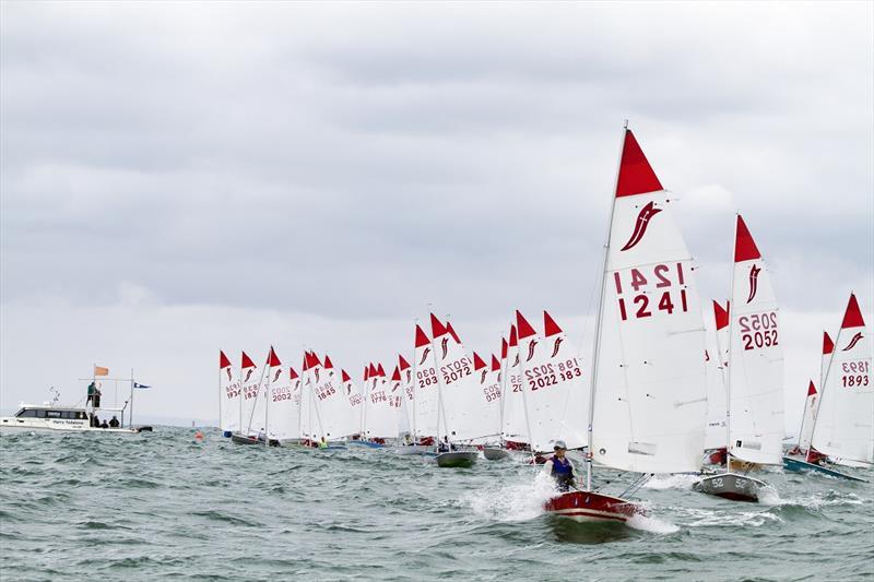 39th Sabre Australian Championships - Big fleet start - photo © Alex McKinnon