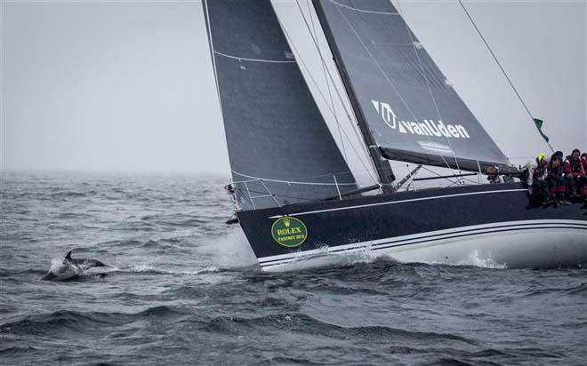 VANUDEN (ITA) sailing with dolphins - 2013 Rolex Fastnet Race ©  Rolex/Daniel Forster http://www.regattanews.com
