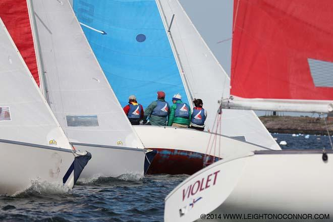 2014 International Jackson Cup Team Race © Leighton O'Connor http://www.leightonphoto.com/