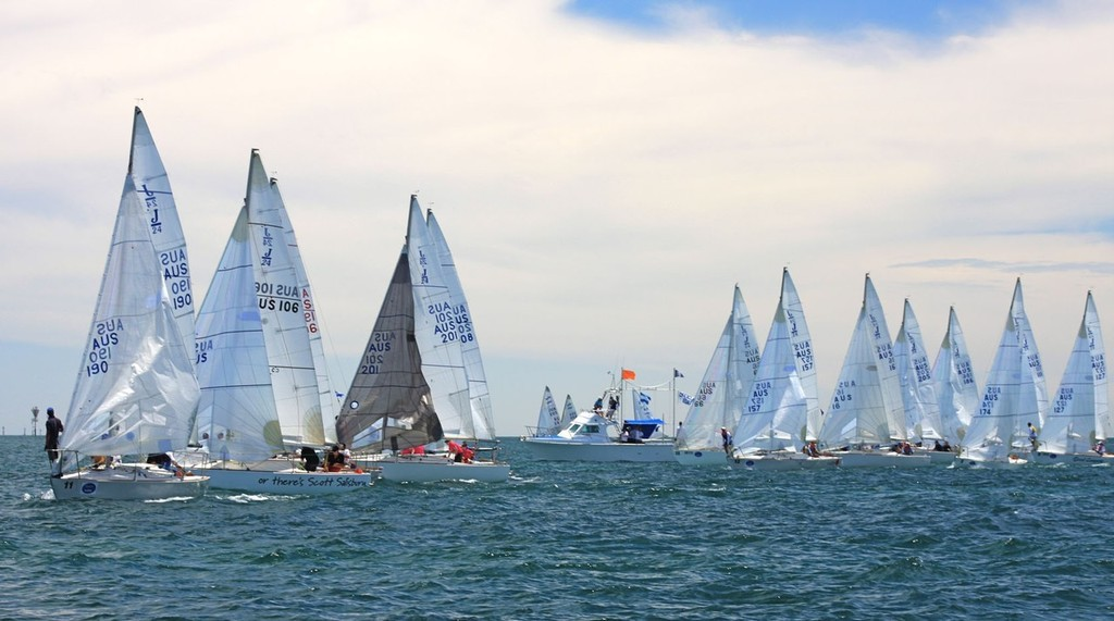 J24 Nationals start line © Traci Ayris