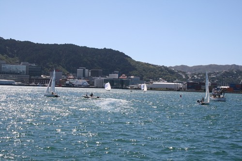 Champagne sailing on Wellington harbour - 2013 CentrePort International Youth Match Racing Championship © RPNYC Events