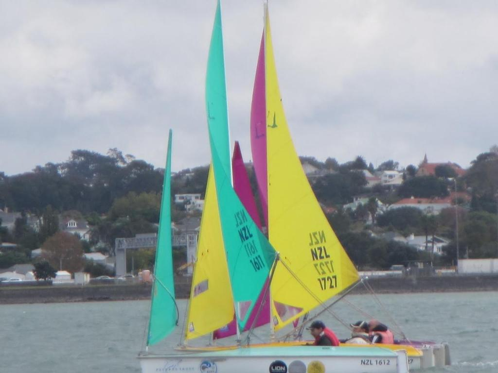 Silver fleet top 3 winner Steve Smith in NZL 1612 - 2013 Sailability Auckland Waller Cup © Megan Rule