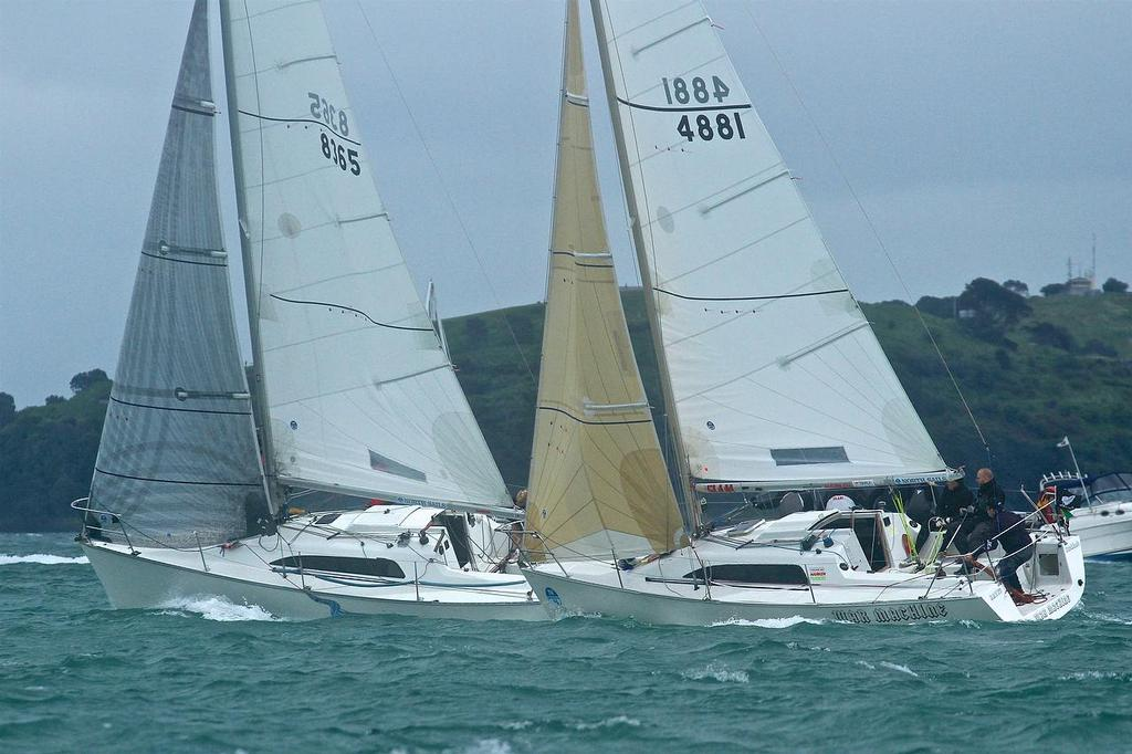Young 88 - Owner Driver Championships - photo © Richard Gladwell <a target=