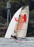 Bird and Bear was always in the top six or seven placings throughout the race - 18ft Skiff Spring Championship Race 2 © Frank Quealey