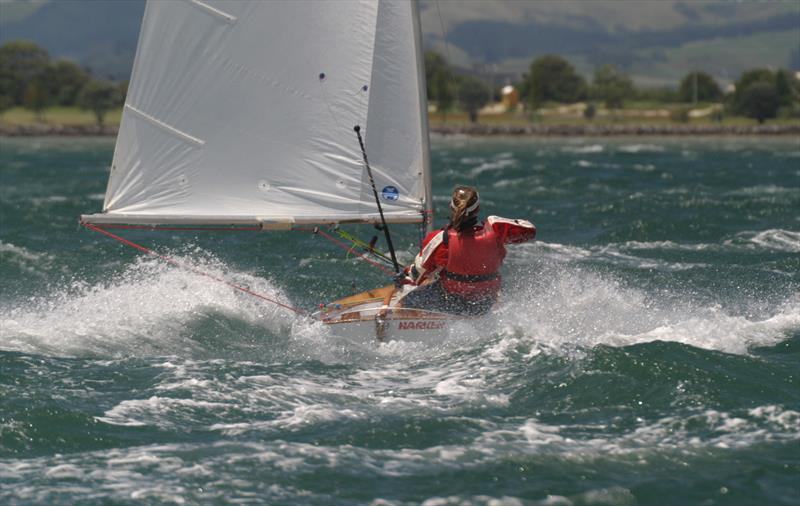 Kelly Barnes sailing in the 2005 Nationals at Tauranga - Des Townson, A sailing legacy  - photo © Kel Martin