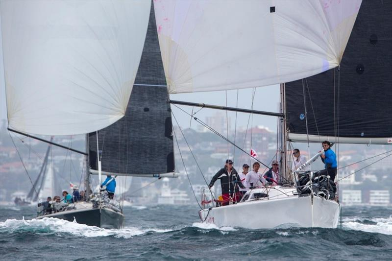 Sydney 38s side by side in 2018 Sydney Harbour Regatta - photo © Andrea Francolini / MHYC