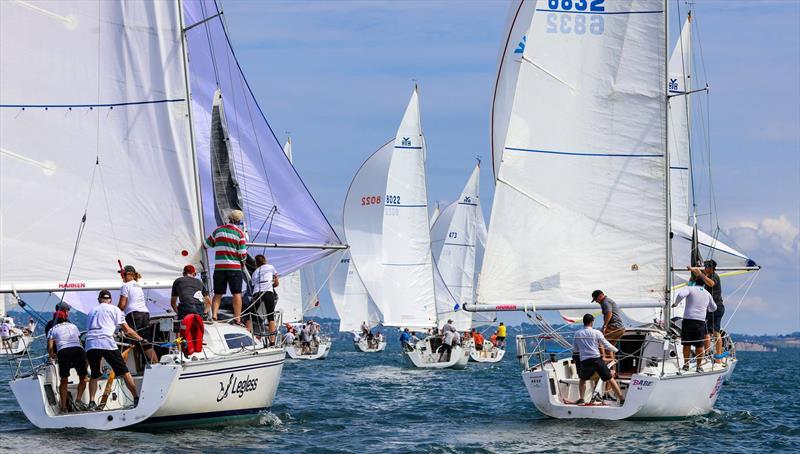 2019 Harken Young 88 National Championships - photo © Rachel von Zalinski
