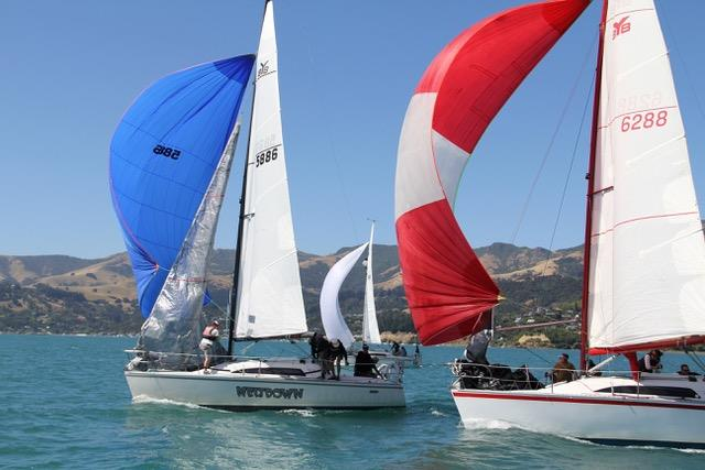Wetdown leads Legacy 2 downwind - photo © Young 88 Owners' Association